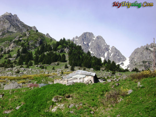 ardesen plateu in rize,turkey,mountain,landscape,ardesen plateu,rize