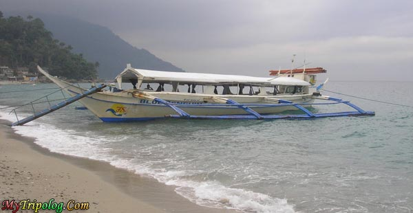 Boat is anchored on white beach,boat,white beach,philipines,puerto galera