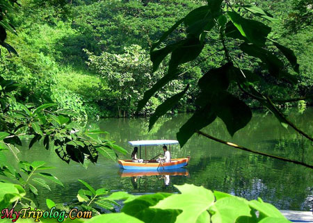 boating in la mesa eco park,lagoon,la mesa eco park,quezon city,philippines