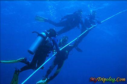 diving in cebu,cebu,underwater,diving,philippines