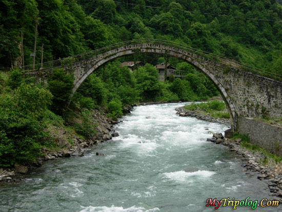 A valley and river in trabzon city,turkey,bridge,river,forest,mountain