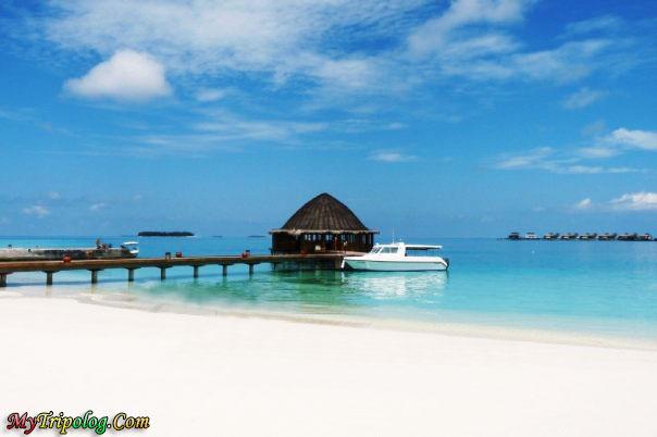 Maldives,water bungalows,beach,yacht,angsana,landscape