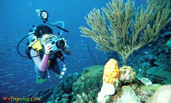 diving in fethiye,fethiye,turkey,diving,underwater world