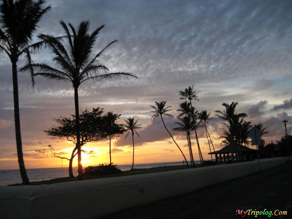 hawaii,sunset,palms,wallpaper,landscape