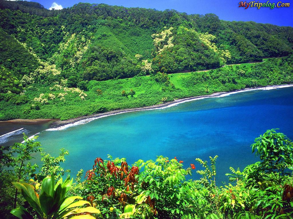 hawaii island,wonderful nature in hawaii,islan,hawaii wallpaper
