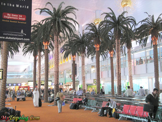 interior dubai international airport,dubai international airport,view,uae,dubai