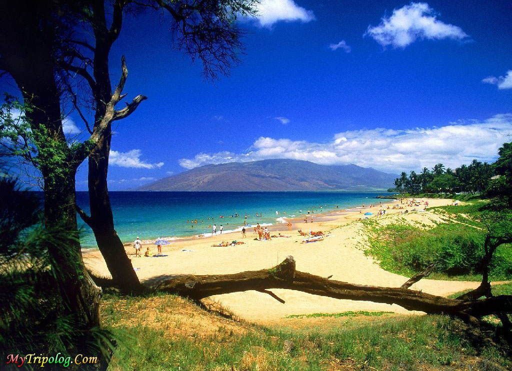 kihei beach in maui,hawaii islands,maui,wallpaper,beach