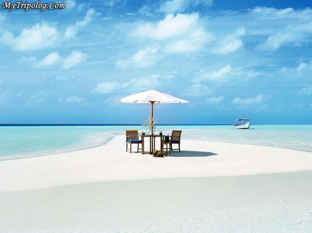 maldives,beach, crystal water,sea,dinner table on beach,summer vacation