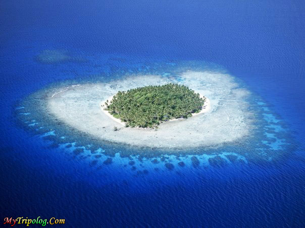 maldives,island in maldives,maldive islands,wonderful view,lonely island