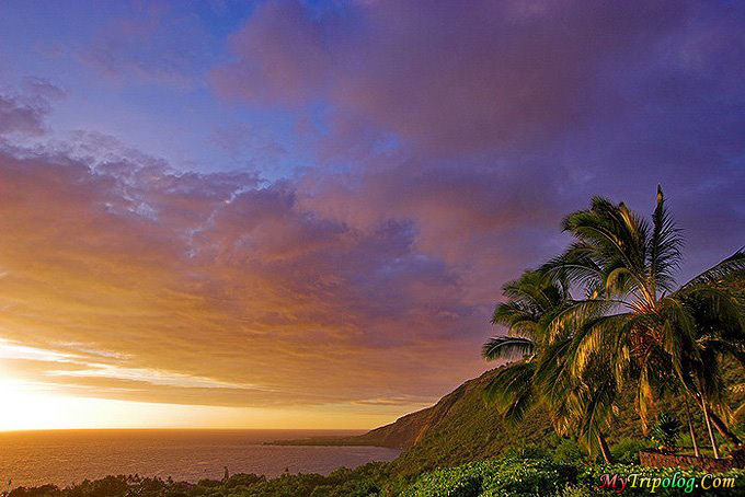 oahu,hawaii,sunset,palms,exotic island