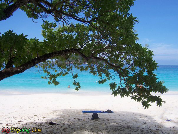 ,thailand,similan island,1 of top 10 island in the world,beach,sea,landscape
