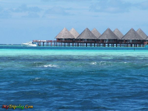 water bungalows in maldives,maldives,water bungalows,velidhu,sea,