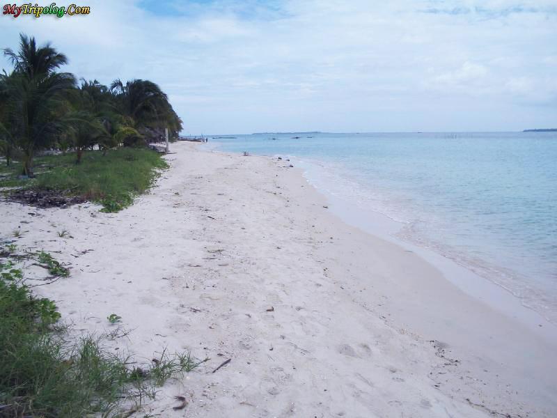 cebu beach,beach,sea,philippines,wallpaper,sand