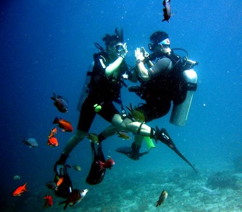 Beautiful Places Underwater: Diving In Indonesia; Divers' Paradise