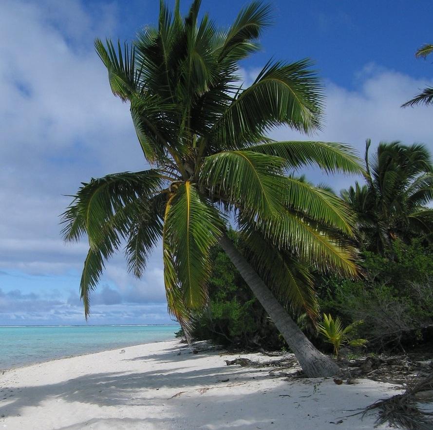 Cook Islands Best Beaches: Vacation On Cook Islands, New Zealand