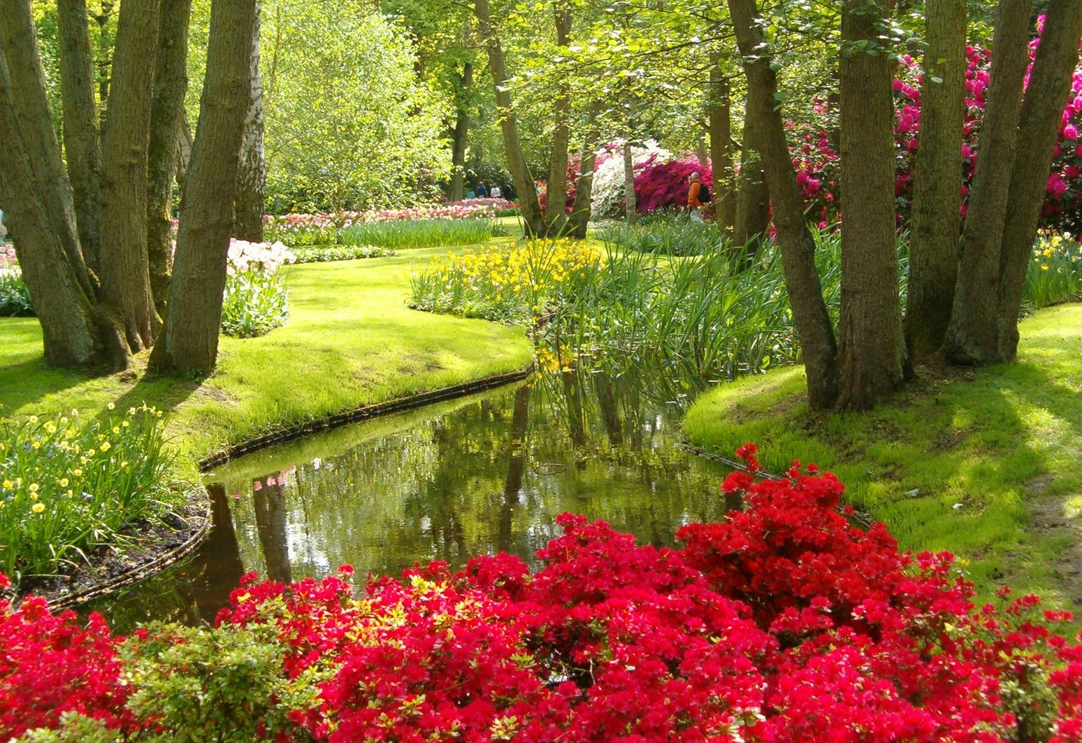 Garden Pong And Colorful Flowers Keukenhof Netherlands Travel