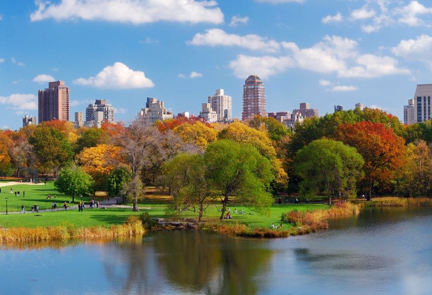 central park new york city amazing