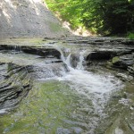 Chautauqua Creek Gorge State Forest, Westfield Western New York Attractions